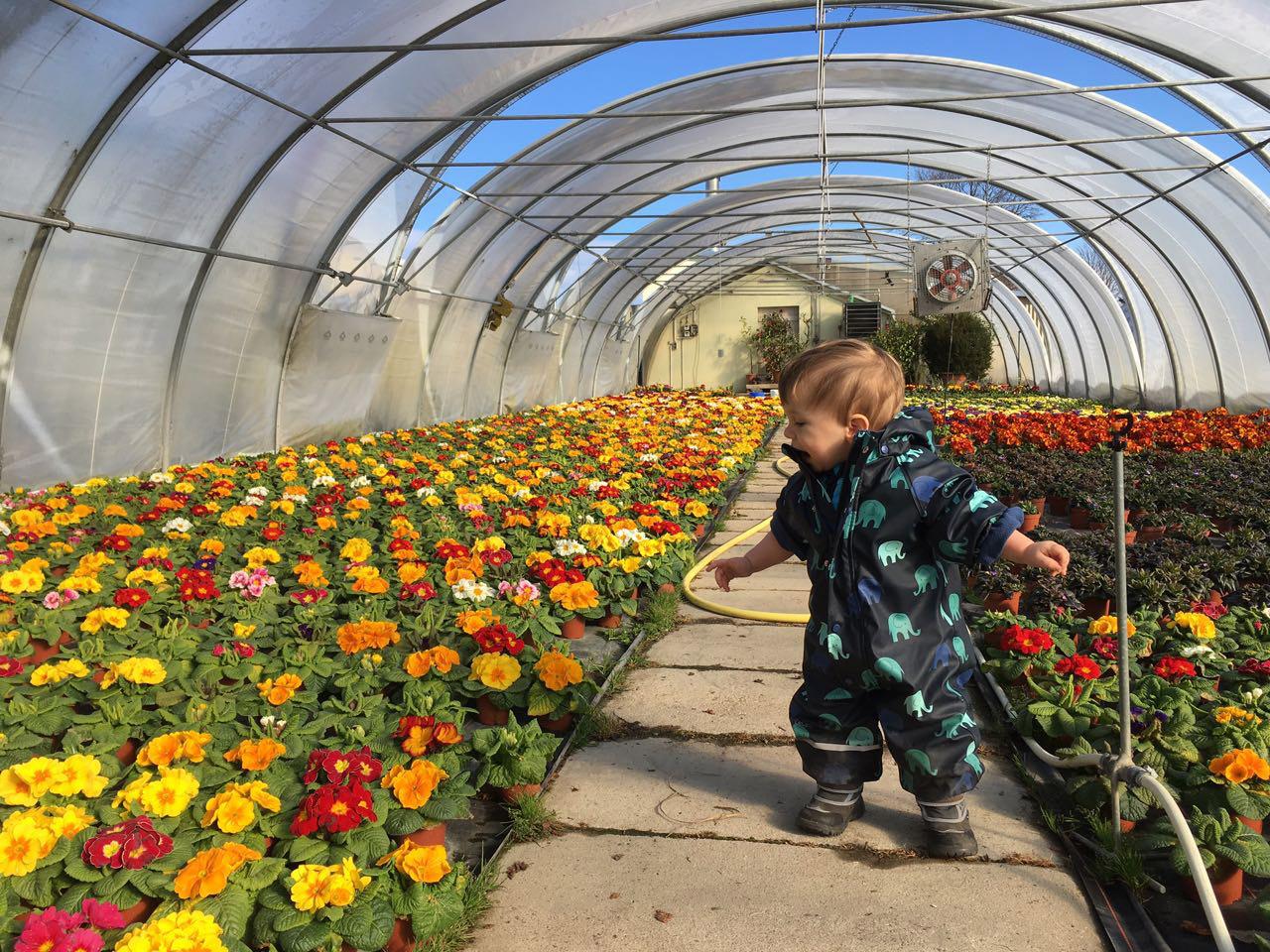 Tag der offenen Gärtnerei am 28. und 29. April 2018